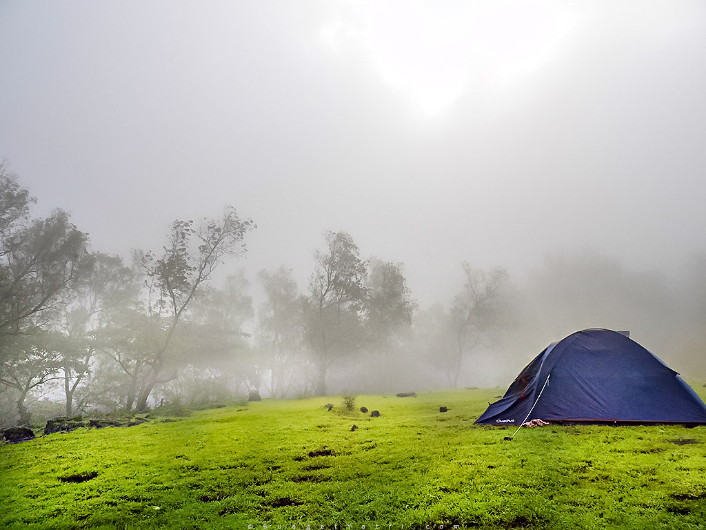 camping in lonavala, tungarli dam