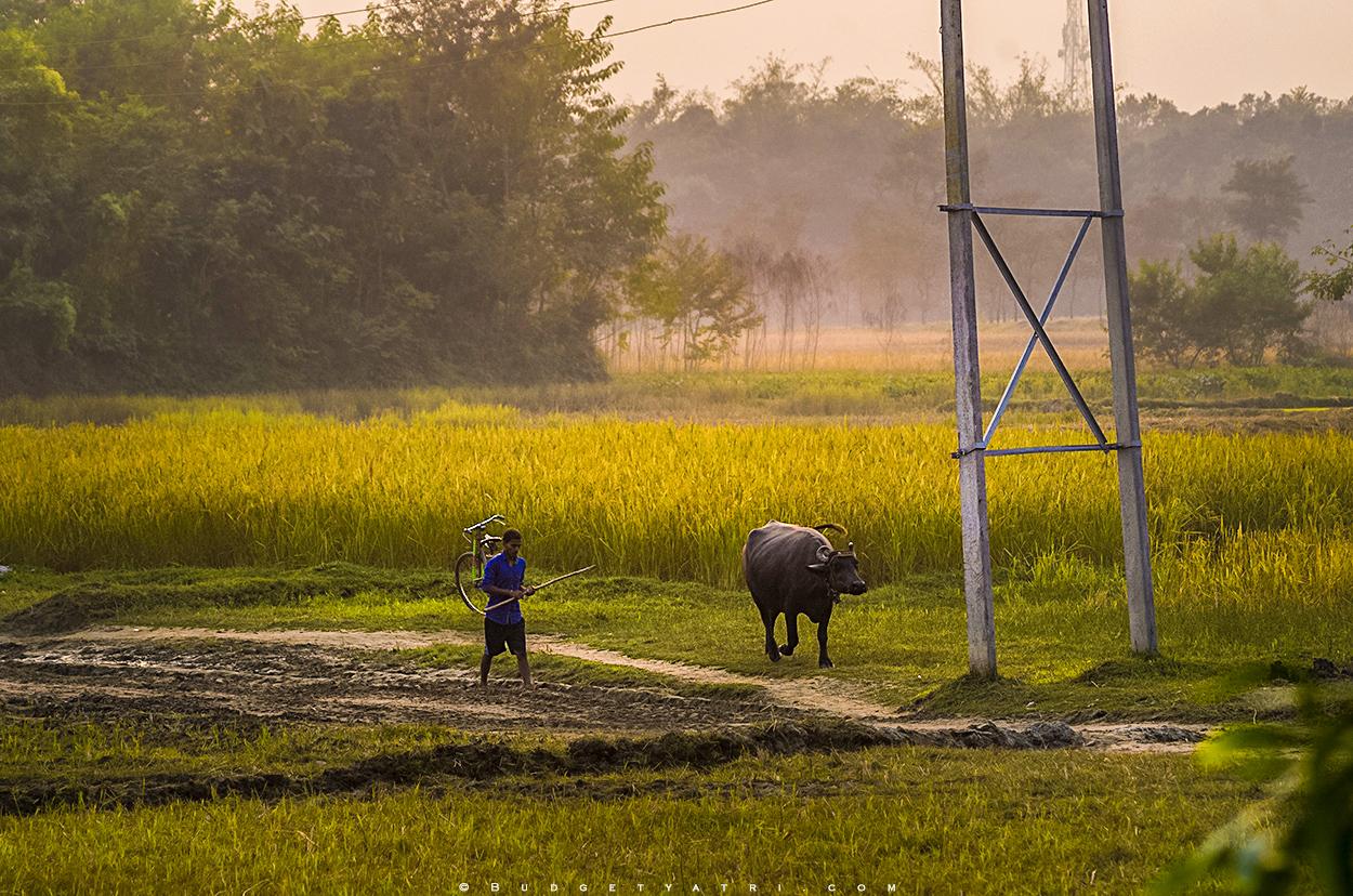 Bihar village photo, Bihar tourism