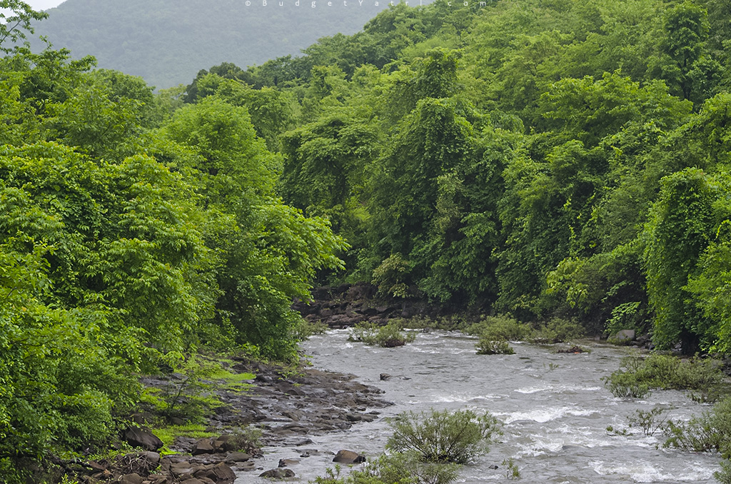 Rivers of konkan, Save Rivers, River Project India